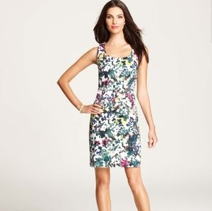 Ann Taylor Floral Kaleidoscope Sheath Dress 8P